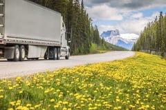 Huvudväg i Jasper National Park fotografering för bildbyråer
