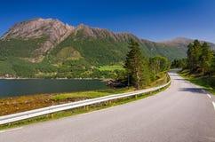 Huvudväg i norskt landskap Arkivfoto