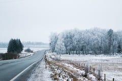 Huvudväg i vinter Royaltyfri Bild