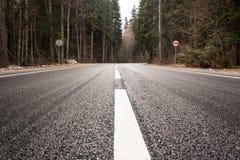 Huvudväg till och med höstskog royaltyfri foto