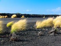 Huvudväg till och med hawaiibo Lava Fields 4 Arkivbilder
