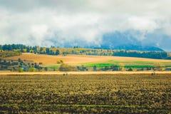 Huvudväglandskap i västra Förenta staterna fotografering för bildbyråer