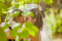 Huwelijk dat van bruid en bruidegom in park is ontsproten Stock Afbeeldingen