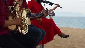 Huwelijk het meest arkest op het strand stock video