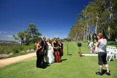 Huwelijk in het Park van de Koning, Perth Royalty-vrije Stock Fotografie
