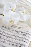 Huwelijk maart en orchideeën Stock Afbeeldingen