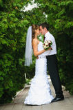 Huwelijks het paar die, omhelst en om elkaar te bekijken bevinden zich Stock Afbeelding