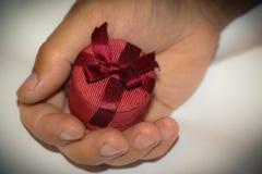Huwelijksaanbieding Stock Afbeelding