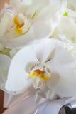 Huwelijksboeket van witte orchidee wordt gemaakt die Royalty-vrije Stock Foto