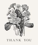 Huwelijksdank en uitnodiging Van het de kaartkader van PrÃmula van kamille Mooie realistische bloemen Vector de gravure victorian Royalty-vrije Stock Afbeeldingen