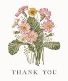 Huwelijksdank en uitnodiging Van het de kaartkader van PrÃmula van kamille Mooie realistische bloemen Vector de gravure victorian Royalty-vrije Stock Fotografie