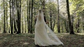 Huwelijksdans van de bruid en de bruidegom in het hout stock video