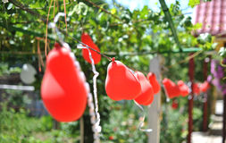Huwelijksdecoratie met rode ballons, in openlucht Royalty-vrije Stock Afbeeldingen