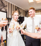 Huwelijksgasten die glazen clinking Stock Fotografie