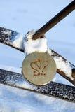 Huwelijkshangslot in de winter Royalty-vrije Stock Afbeeldingen