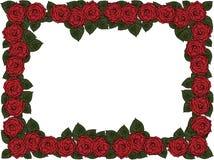 Huwelijkskader van bloemen stock illustratie