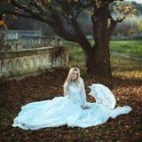 Huwelijksmanier Stock Foto's