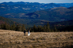 Huwelijkspaar die op het gebied lopen De fascinerende achtergrond van het berglandschap Stock Foto