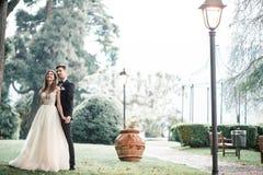 Huwelijkspaar in het park onder een boom in de regen stock foto's