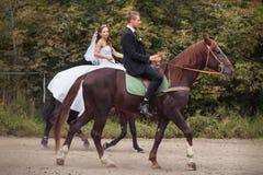 Huwelijkspaar op paarden Royalty-vrije Stock Fotografie