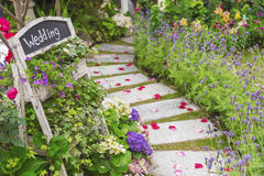 Huwelijkspartij in mooie groene tuin Royalty-vrije Stock Foto's