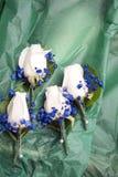 Huwelijksrozen en blauwe babyadem Stock Foto's