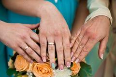 Huwelijksschillen Stock Afbeeldingen