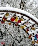 Huwelijkstradities Huwelijken in de winter, Huwelijkssloten stock afbeelding