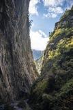 Huya大峡谷 免版税库存照片