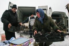 Huya del mercado en invierno imágenes de archivo libres de regalías