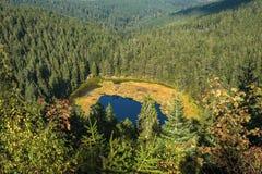 The Huzenbacher lake near Baiersbronn Royalty Free Stock Photo