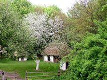 Huzul hut. Spring began in the old Ukrainian village stock image