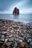 Hvítserkur, Noord-IJsland Stock Foto's