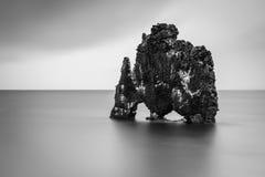 Hvítserkur, Nord-Island stockfotos