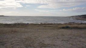 Hvaler plaża Norwegia zdjęcie wideo