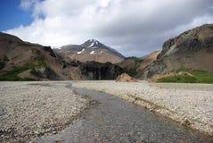 Hvanngil (canyon dell'angelica) nel sout ad est dell'Islanda Fotografia Stock