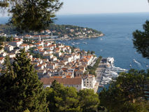 Hvar bay trees Royalty Free Stock Images