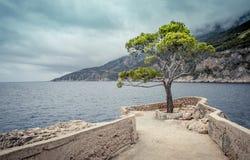 Hvar Insel, Kroatien stockfotos