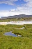 Hveravellir  Hot Springs Stock Image