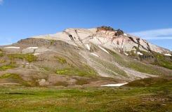 Hvitserkur流纹岩山在冰岛 免版税库存图片
