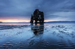 Hvitserkur är en spektakulär rock i havet på den nordliga kusten av Island Legender säger att den är ett förstenat fiska med drag royaltyfria bilder