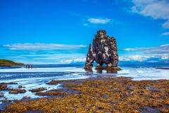 Hvitserkur -玄武岩岩石 库存图片
