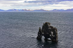 Hvitserkur basalt stack in Iceland Stock Images