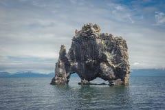 Hvitserkur, formation de roche dans le fjord de Hunafjordur, Islande Images stock