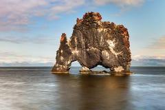 Hvitserkur, Island Stockbilder