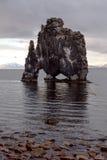 Hvitserkur nordliga Island Arkivfoton