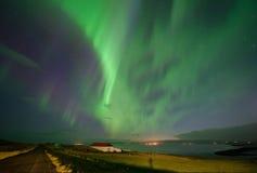 Hvitserkur on the Northern of Iceland Royalty Free Stock Photos
