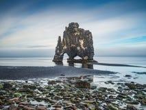 Hvitserkur - pila del basalto nel mare al tramonto Fotografie Stock