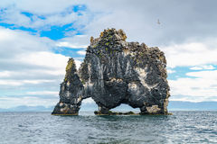 Hvitserkur, a rock formation in the sea Royalty Free Stock Image