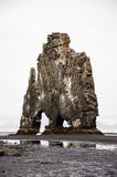 Hvitserkur, sabbia nera, pila del basalto, Islanda Immagine Stock